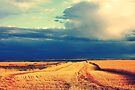 Harvest Sky by wwyz