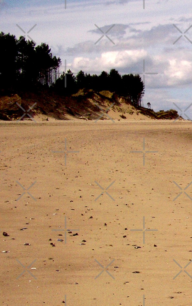 Left-hand panel of Findhorn Bay triptych by Tez Watson