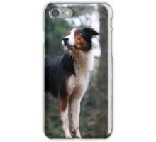 Tricolor Collie iPhone Case/Skin