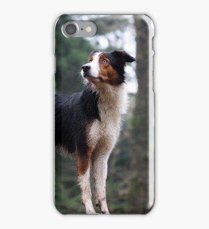 Tricolor Collie iPhone Case/Skin