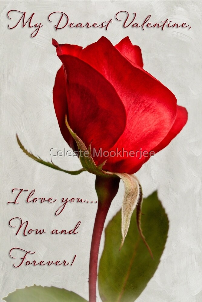 One red rose Valentine card by Celeste Mookherjee