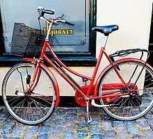 Red Bicycle in Denmark, Copenhagen by Catherine Sherman
