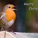Singing of Christmas by digitaldawn