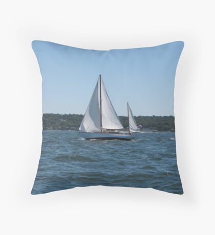 Wind at my Back Throw Pillow