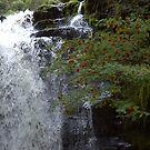 Water falls-Wales by Nala