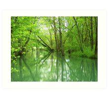 Spring Green Reflections Art Print