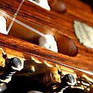 Guitar by Sophie Matthews