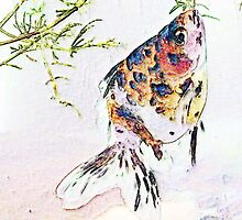 Calico Fantail Goldfish by Marcella Babineaux