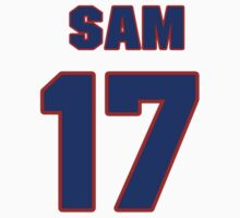 National football player Sam Hurd jersey 17 by imsport