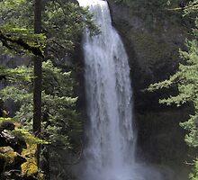 Salt Creek Falls by lisalemp