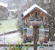 Here comes the snow - image 3 by missmoneypenny