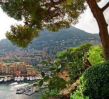 View of Fontvieille Harbor from Saint-Martin Gardens, Monaco by atomov