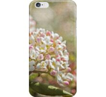 Vintage Inspired Pink and White Woodland Flowers with French Script iPhone Case/Skin