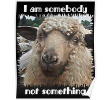 """""""I am somebody, not something"""" Poster"""