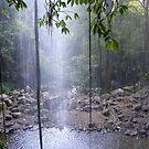 'Rainforest' Looking through Crystal Falls, Dorrigo N.S.W. by Rita Blom