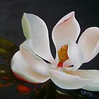 Divine magnolia by Micheal Giddens
