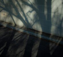 Concrete by BrainCandy