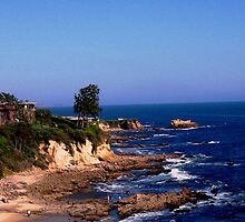 Laguna Beach  by Michael  Galperin