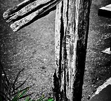 Groovy by Richard Hamilton-Veal