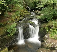 Rapids above Torc waterfall by John Quinn