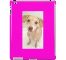 HONEY BUN ♡ iPad Case/Skin