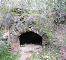 A beehive coke oven intact! Newnes ruins, New South Wales. by Rita Blom