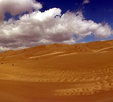 Great Sand Dunes National Park  by LizzieMorrison