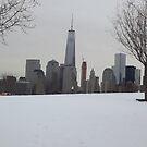 View of World Trade Center, Lower Manhattan Skyline, Liberty State Park, New Jersey by lenspiro