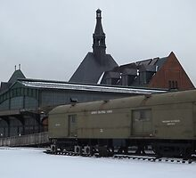 Classic Train, Central Railroad of New Jersey Terminal, Liberty State Park, New Jersey  by lenspiro