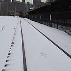 Classic Train, Train Tracks, Snow View, Liberty State Park, New Jersey  by lenspiro
