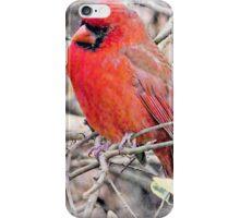 Handsome Mr. Cardinal iPhone Case/Skin