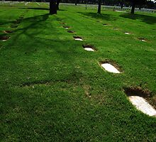 Graves in the grass by Gili Orr