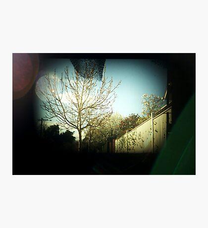 saturday Photographic Print