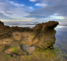 Point Lonsdale rockpool by Andrew Widdowson