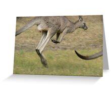 Hopping Kangaroo  Greeting Card