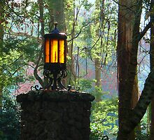 Gate Light by Tom Newman