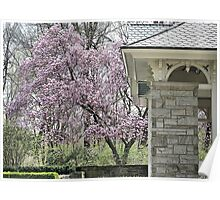 Spring at the Pavilion Poster