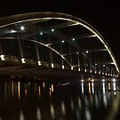 Frederick Douglass-Susan B. Anthony Memorial Bridge  by Jeff Palm Photography
