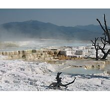 Mammouth Springs of Yellowstone Photographic Print
