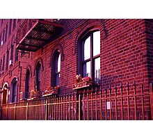 Rasberry Sunset Photographic Print