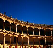 Plaza de Toros de Ronda by Damienne Bingham