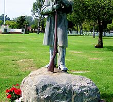 Monument to Civil War Soldiers  by Gili Orr
