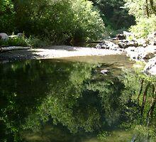 Whalehead Creek by Sheri Scherbarth