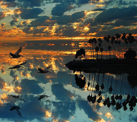 On the Surface by Voytek Swiderski