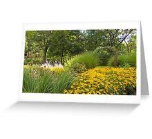 nature daisies Woodstock Greeting Card