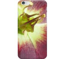 The innermost whorl of a Flower iPhone Case/Skin