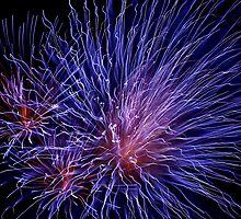 Fireworks C3 by PugH00
