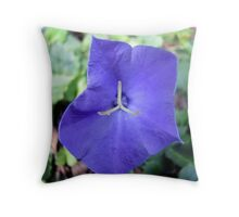 Hakone Balloon Flower Throw Pillow