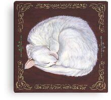 Sleeping Treasure Canvas Print