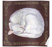Sleeping Treasure Poster